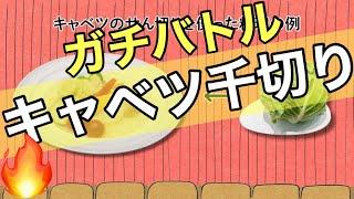 【キャベツせん切り】新宿調理師専門学校 x 学生図鑑