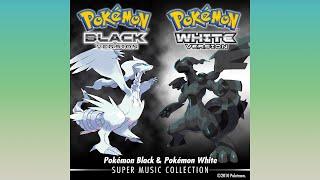 Lacunosa Town [Pokémon: Black & White]