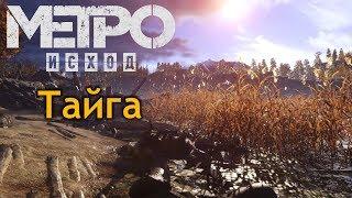 Прохождение Metro Exodus #9 - Пионеры, пираты, медведь и Тайга