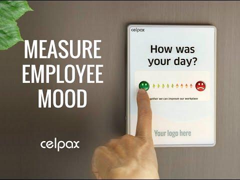 Employee engagement surveys: Dashboard Trends