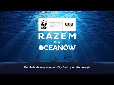 Razem dla Oceanów - Dziewczynka i Ocean - 5 min