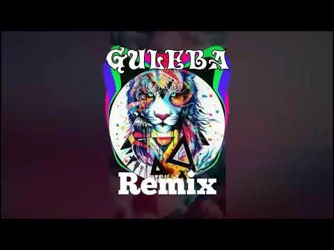 Vmedia Guleba Dj Remix