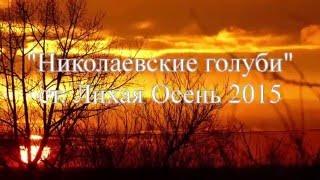 """""""Николаевские голуби"""" Лихая """"Осень 2015"""""""