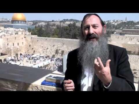 Inside the Garden of Eden  - Rabbi Svirsky on Parsha Bereishis