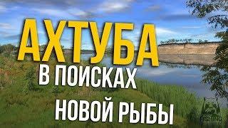 РУССКАЯ РЫБАЛКА 4. Ахтуба - В поисках новой рыбы