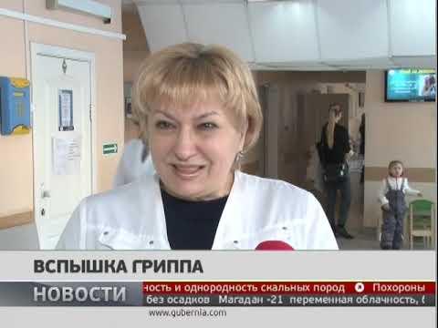 Вспышка гриппа. Новости 22/01/2019. GuberniaTV