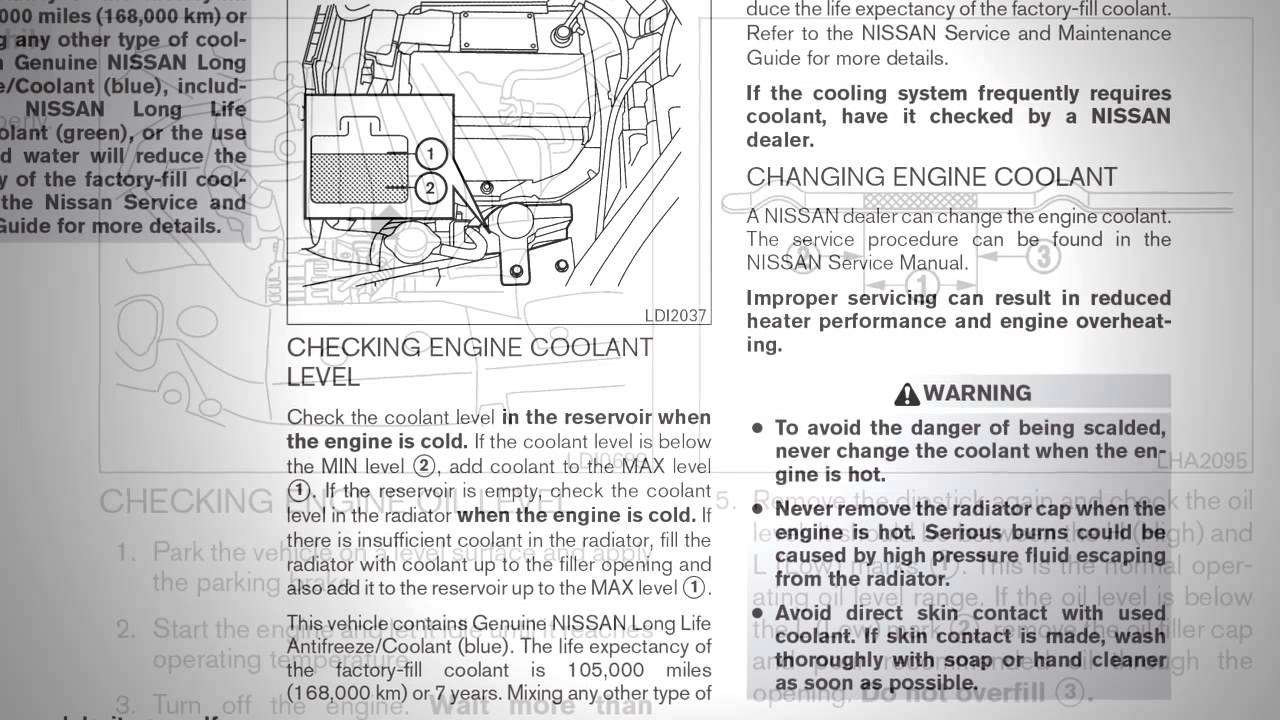 Nissan Sentra Owners Manual: Continuously Variable Transmission (CVT) fluid (if so equipped)