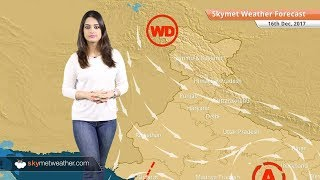 Weather Forecast for Dec 16: Fog in Punjab, Haryana, UP, Delhi pollution to remain on lower side
