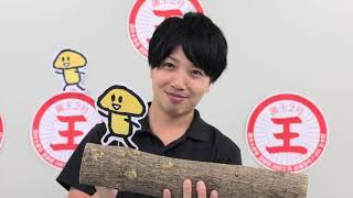 原木しいたけホダキングを使ったシイタケの作り方を、動画でわかりやす...