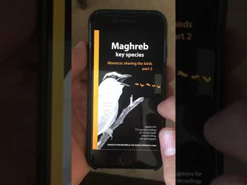 The Sound Approach - Morocco: sharing the birds ePub App demo