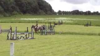 Pony cup jumping