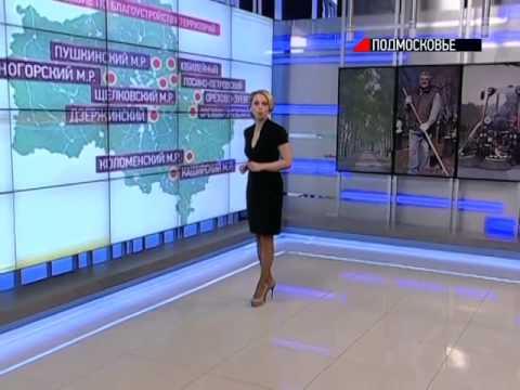 В городах Подмосковья пройдут субботники