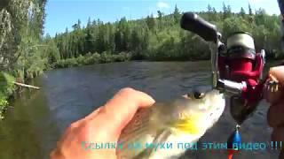 Рыбалка на крупного хариуса в Восточной Сибири в июле !!!