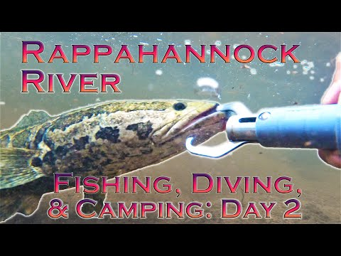 Snakehead, Smallmouth Bass, And More: Fishing, Diving, And Camping On The Rappahannock River