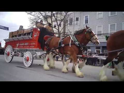 St. Patrick's Day Parade in South Boston