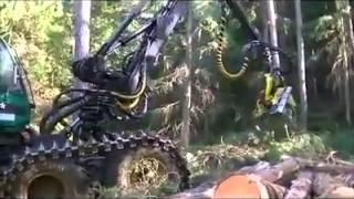 How to cut the tree using Amazing tree cutting machine