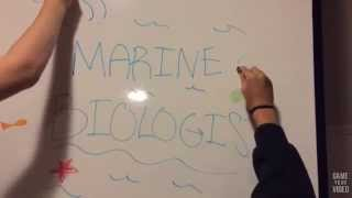 Draw My Career: Marine Biologist