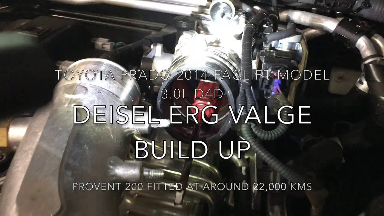 Toyota Prado D4d Egr Build Up Youtube