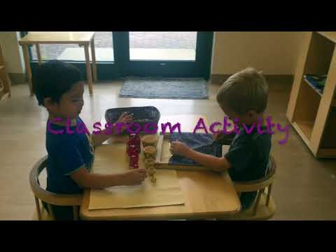 Prairie View Montessori Aurora IL - A Sneak Preview