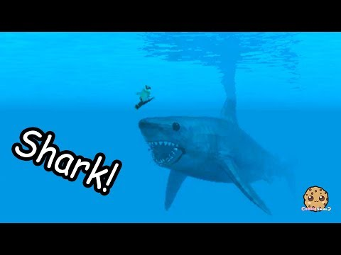 Giant Shark On Boat + Swimming In Water - Roblox Cookie Swirl C Game