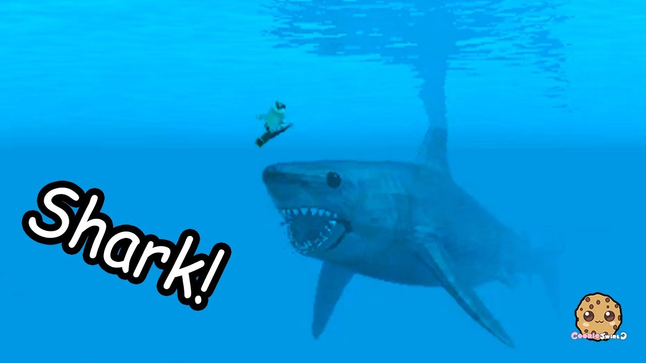 giant shark on boat   swimming in water - roblox cookie swirl c game video