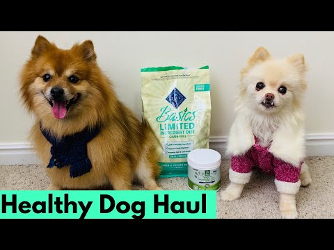 healthy-puppy-haul-|-mail-monday-for-pomeranians