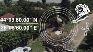 "Enel & The Ornithological Society of Romania ""The Nest Address"" (Publicis Romania)"
