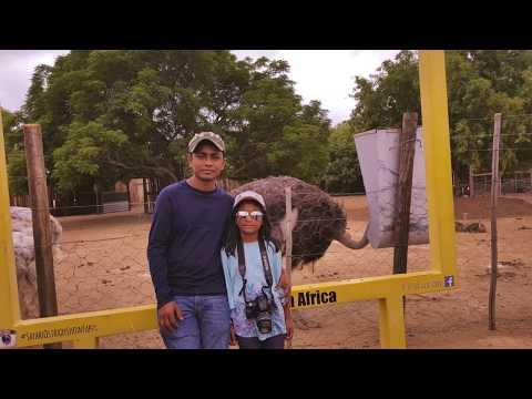 Ostrich safari tours. Beautiful Oudtshoorn, Western Cape, South africa.