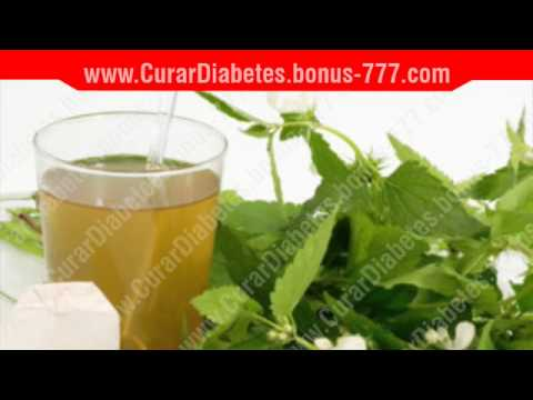 Descubre las 5 plantas medicinales para la diabetes | Doovi