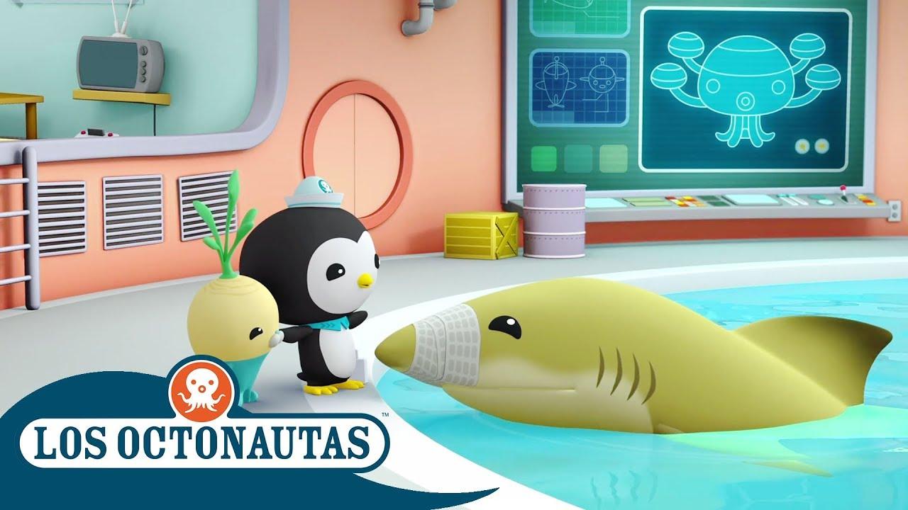 Los Octonautas Oficial en Español - Joven Tiburón Limon | Episodios completos