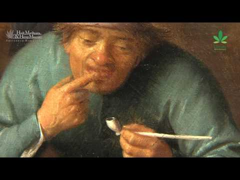 Did you know about Sorgh painting cannabis in Rembrandt's time?   Canna History HD