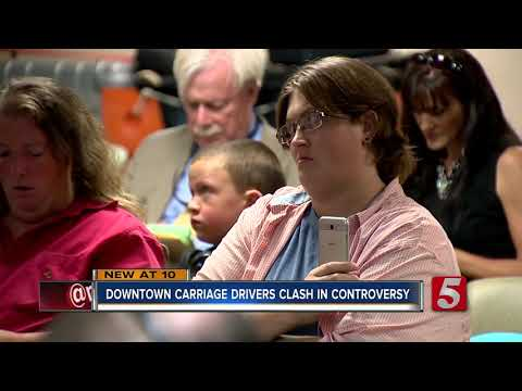 Meeting Over Horse-Drawn Carriage Complaints Gets Heated