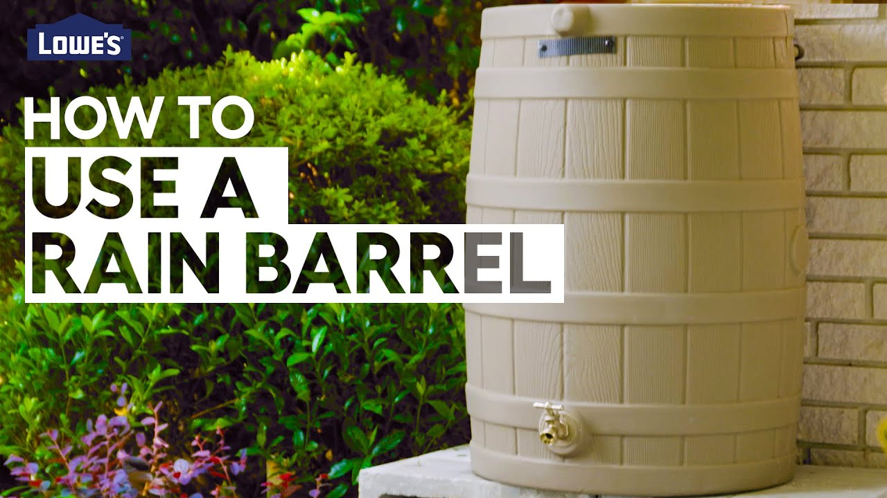 How To Use a Rain Barrel | DIY Basics