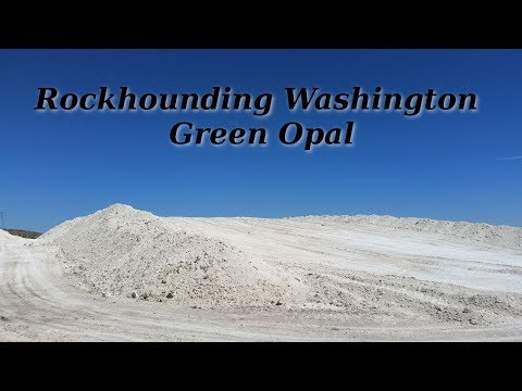 Rockhounding Washington Green Opal From A Diatomaceous Earth Mine