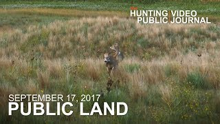 Public Land Day 4: Nebraska Bowhunt, Wide Buck Encounter | The Hunting Public