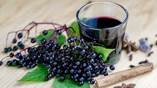 Drink A Glass Of Elderberry Juice For 7 Days, THIS Will Happen To Your Body!