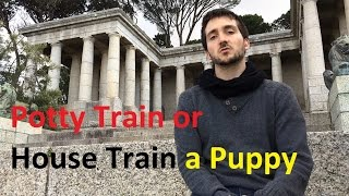How to House Train or Potty Train a Puppy - Dog Training Nibbles Ep4