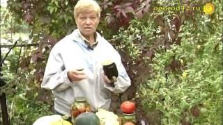 видео Черная смородина на зиму без сахара: все рецепты заготовок
