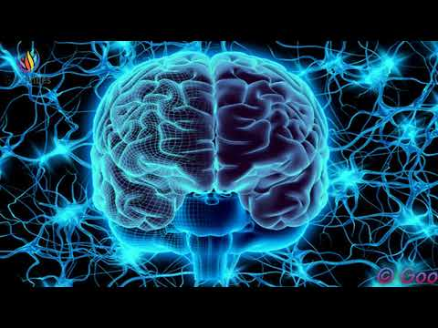 Neuroplasticity Meditation: Heal Your Brain Binaural Beats / Nerve Regeneration #GV331