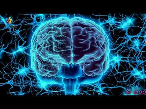 Neuroplasticity Meditation : Heal Your Brain - Binaural Beats / Nerve Regeneration #GV331