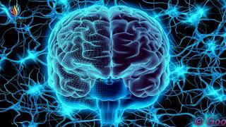 Neuroplasticity Meditation : Rebuild Your Brain ✔ Theta Binaural Beats ✔ Brain Healing Sounds #GV331