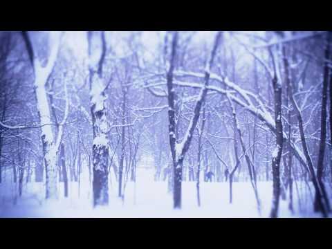 I present: Montréal - Journée sous la neige - A Winter Day