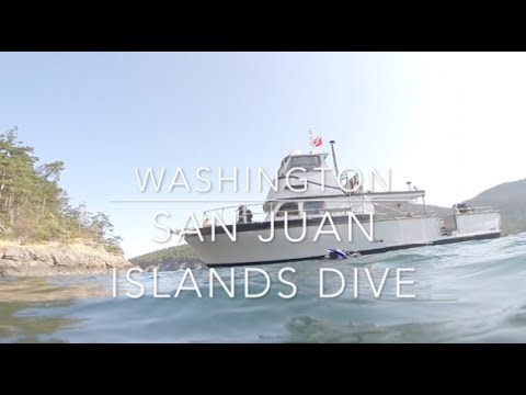 SCUBA Diving: San Juan Islands, Washington