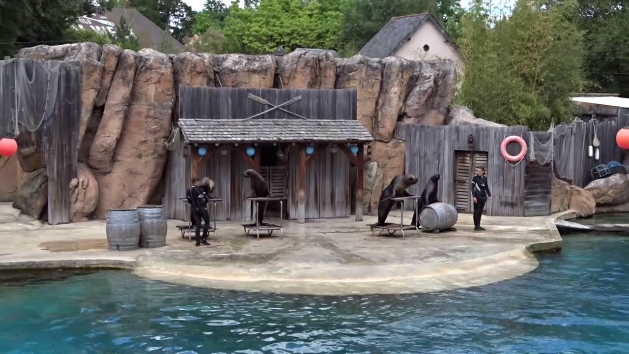 le pal spectacle d 39 otaries 2016 avec marie d 39 une saison au zoo youtube. Black Bedroom Furniture Sets. Home Design Ideas