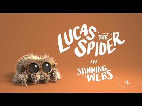 download Lucas the Spider - Spinning Webs