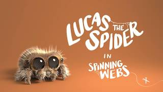 Lucas the Spider - Spinning Webs