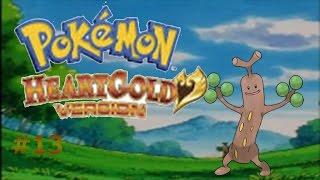 El árbol que bloquea el camino/Pokemon Heart Gold #13