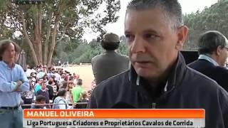 Milhares de pessoas assistiram à corrida de cavalos em Celorico de Basto