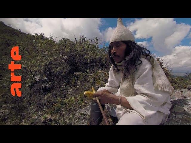 Äquator (Folge 4): Mutter Erde | 360° Video | ARTE
