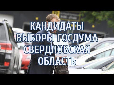 Регистрацию кандидатов на выборы в Госдуму закрыли после решения по Шипулину
